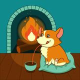 Cute dog of welsh corgi drinks hot chocolate with a fireplace. Vector illustration. For cards, calendars, posters. Flat design Stock Images