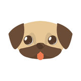 Cute doggy brown tongue out Royalty Free Stock Image