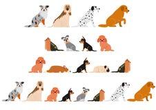 Cute dogs border set. Various Cute dogs border set stock illustration