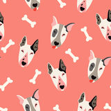 Cute dogs (bulyteryers) vector pattern. Illustrations on colored background Royalty Free Stock Photo