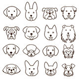Cute dogs faces line art set Stock Photography