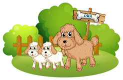 Cute dogs near the signboard. Illustration of the cute dogs near the signboard on a white background stock illustration
