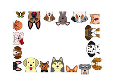 Free Cute Dogs Rectangle Frame Stock Photography - 95479082