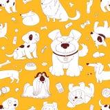 Cute Dogs. Stock Photo
