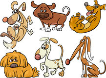 Cute dogs set cartoon illustration Royalty Free Stock Photography