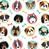 Cute dogs set. Cute dogs vector pattern, illustrations on colored background