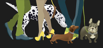 Cute dogs with their owners. Vector illustration Stock Image