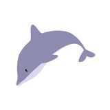 Cute Dolphin. In white background Royalty Free Stock Photo