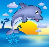 Cute dolphin with sunset. Smiling dolphin with sunset - color illustration Royalty Free Stock Photos