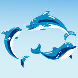 Cute dolphins aquatic marine nature ocean blue mammal sea water wildlife animal vector illustration. Swimming fish underwater beautiful tropical flipper Stock Photography