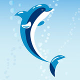 Cute dolphins aquatic marine nature ocean blue mammal sea water wildlife animal vector illustration. Stock Image
