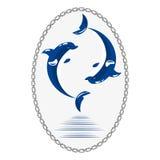 Cute dolphins aquatic marine nature ocean blue mammal sea water wildlife animal vector illustration. Stock Photo