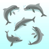 Cute dolphins in different poses vector set Stock Photography
