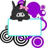 Cute donkey baby girl copyspace Royalty Free Stock Photography