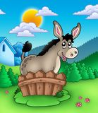Cute donkey behind fence. Color illustration Royalty Free Stock Image