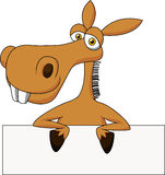 Cute donkey cartoon with blank sign Royalty Free Stock Images