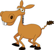 Cute donkey cartoon Royalty Free Stock Images