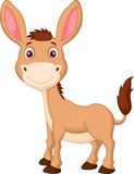 Cute donkey cartoon Stock Image