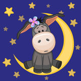 Cute Donkey on the moon Stock Image