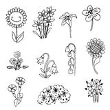 Cute doodle flower on black line drawing sketch vector Stock Photos