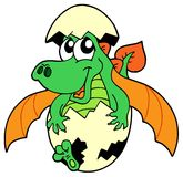 Cute dragon in egg Royalty Free Stock Image