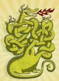 Cute Dragon Maze Game. For children. Task: which head is blowing fire? Solution: neck on the right! Illustration is in eps10  mode Stock Photography