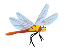 Cute dragonfly Royalty Free Stock Photography