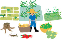 Farmer with farm ecosystem elements. Cute drawing of a blue shirt farmer with agricultural crops and his farm elements. a basket of potatoes, green peas, corns Royalty Free Stock Photos