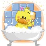 Cute Duck Stock Photo