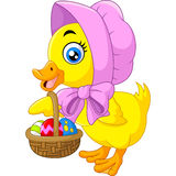 Cute duck with bucket of eggs. Stock Photography