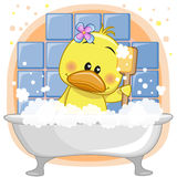 Cute Duck. Cute cartoon Duck in the bathroom Stock Photo