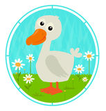Cute Duck Royalty Free Stock Photography