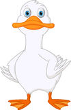 Cute duck cartoon Royalty Free Stock Photos