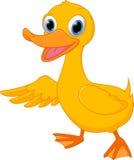 Cute duck cartoon presenting Royalty Free Stock Image