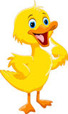 Cute duck cartoon. Vector illustration of cute duck cartoon isolated on white background vector illustration