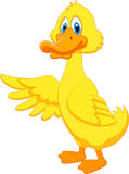 Cute duck cartoon waving Stock Image