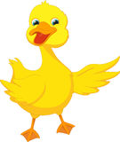Cute duck cartoon waving Stock Photography