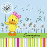 Cute Duck with dandelion Royalty Free Stock Photos
