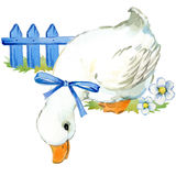 Cute duck. domestic farm bird watercolor illustration. Cute duck. domestic bird watercolor illustration Royalty Free Illustration