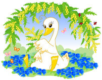 Cute swan with flowers Royalty Free Stock Image