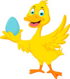 Cute duck holding blue egg Stock Photo