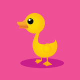 Cute duck Royalty Free Stock Images