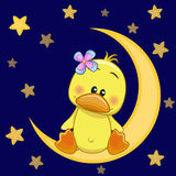 Cute Duck on the moon Stock Photos
