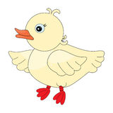 Cute duck pattern Royalty Free Stock Photography