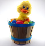 Cute duckling sitting on bucket full of assorted colored easter eggs Stock Photography