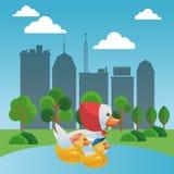 Cute ducks swimming on lake. Vector illustration graphic design Stock Photos