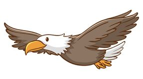 Cute Eagle Flying On White Background Stock Images