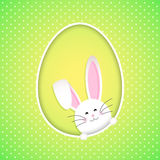 Cute Easter Bunny background Stock Image
