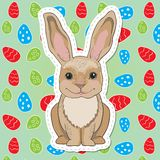 Cute easter bunny with big ears Royalty Free Stock Images