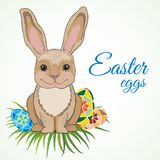 Cute easter bunny with big ears Royalty Free Stock Photos